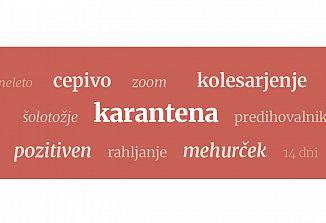 Jezikovnica (100)