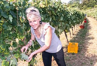 """Pridelovanje vina je zame način izražanja"""
