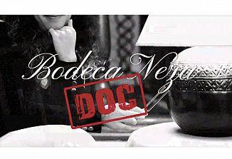 Bodeča Neža DOC, dokumentarna serija o zborovski dejavnosti