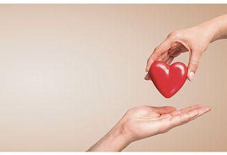 Med solidarnostjo in ljubeznijo