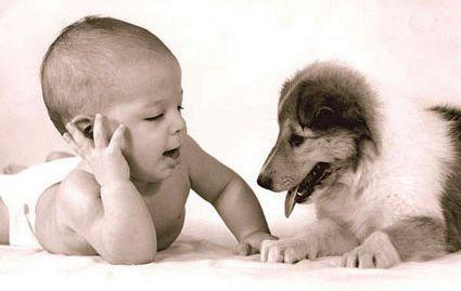 Ko se pogovarjajo živali in otroci