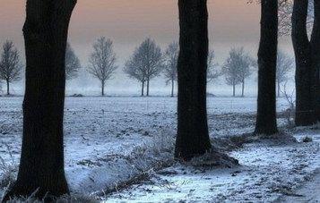 Prihaja mraz, burja in sneg do nižin!