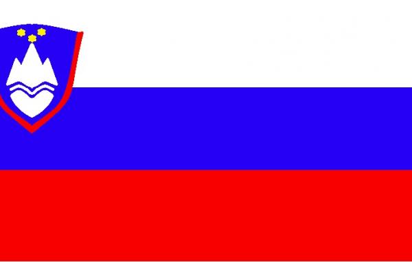 Ob dvigu slovenske zastave v šolskem centru v Gorici